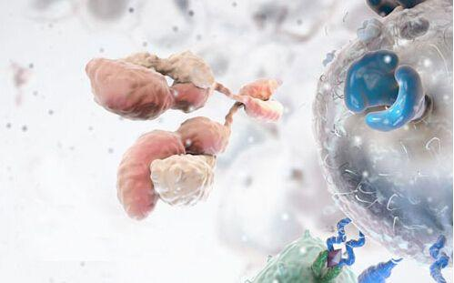 """独家追踪   推进实体瘤临床研究和治疗 """"未名旭珩生物""""获新投资"""