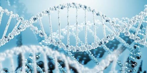 """ViGeneron GmbH""获A轮融资 致力开发创新性基因疗法"