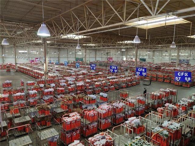 昆明国际花卉拍卖交易中心  图源 | 经济日报