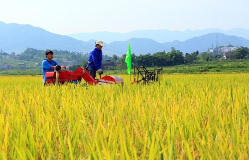 独家融资 | 华软资本再次押注这家小型农业器械研发商 聚焦农村市场客户群