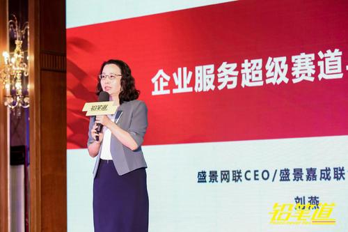 盛景网联刘燕:企业服务实现拐点式增长需要SaaS+